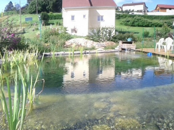 Photo grande piscine naturelle originale - Construire une piscine naturelle ...