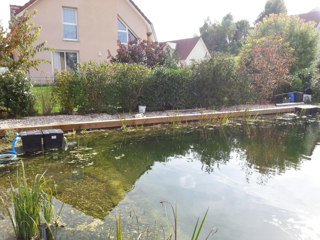 Fabrication d 39 un filtre biologique pour bassin piscine for Prix piscine biologique